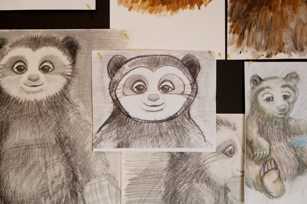 Pencil sketches of Bo Bear
