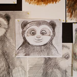 Blyant- skisser av Brillebjørn