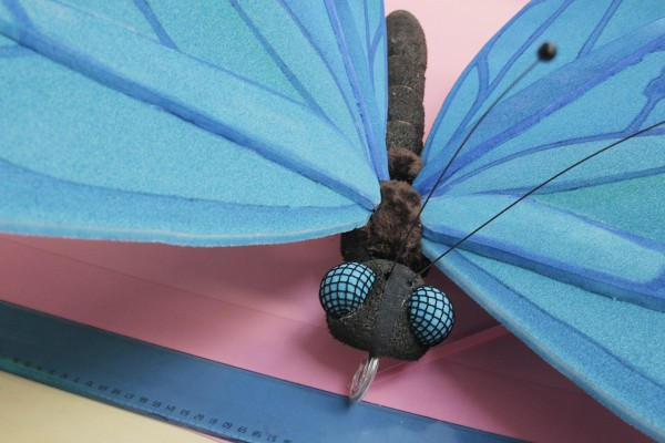 Detalj av hodet og vingene til en stor blå sommerfugl