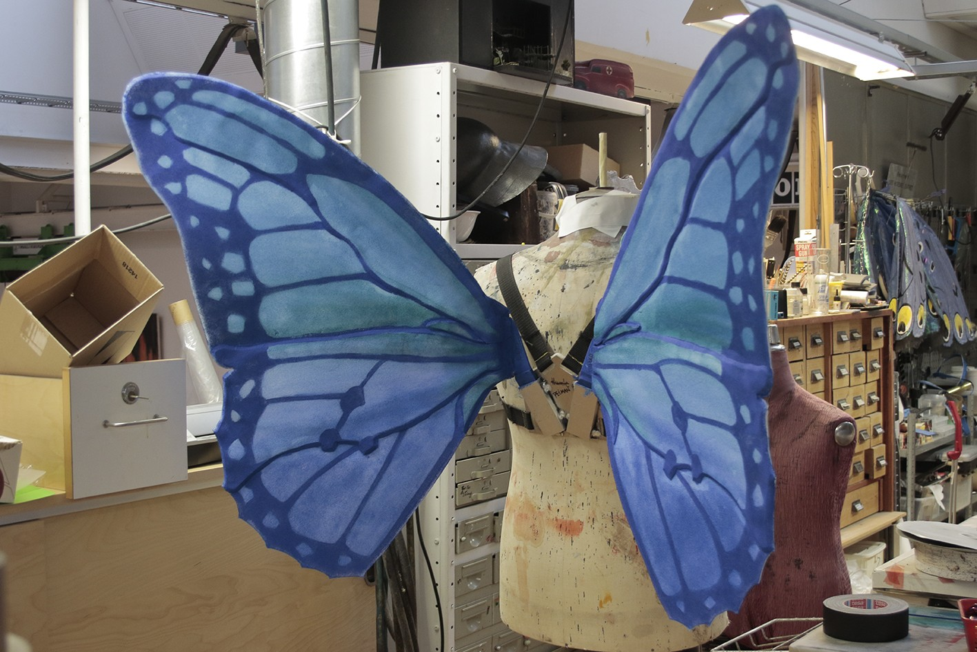 Blue butterfly wings displayed on a tailor's dummy