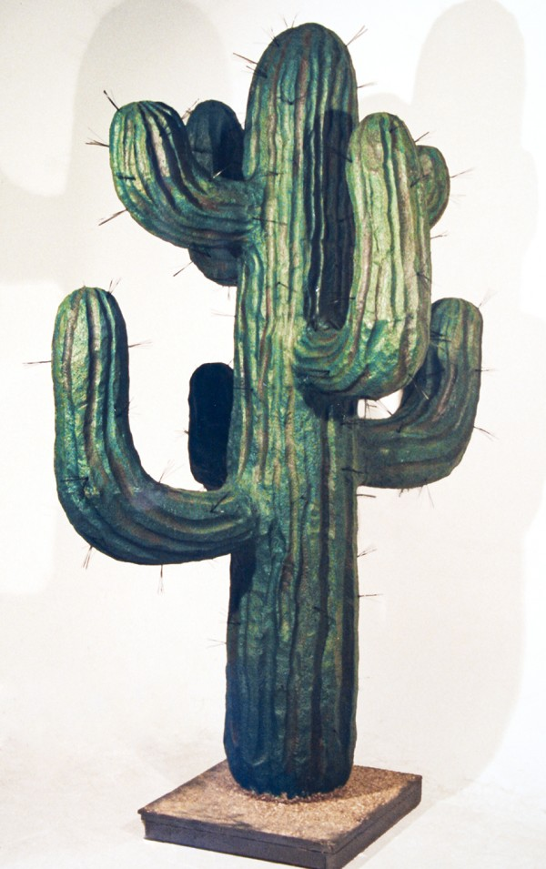 A green, large cactus with spines