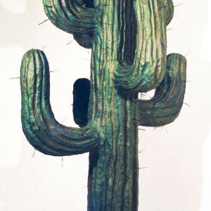 En stor, grønn kaktus med nåler