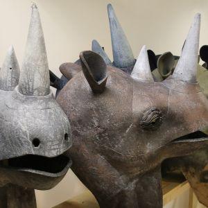 Rhinoceros heads