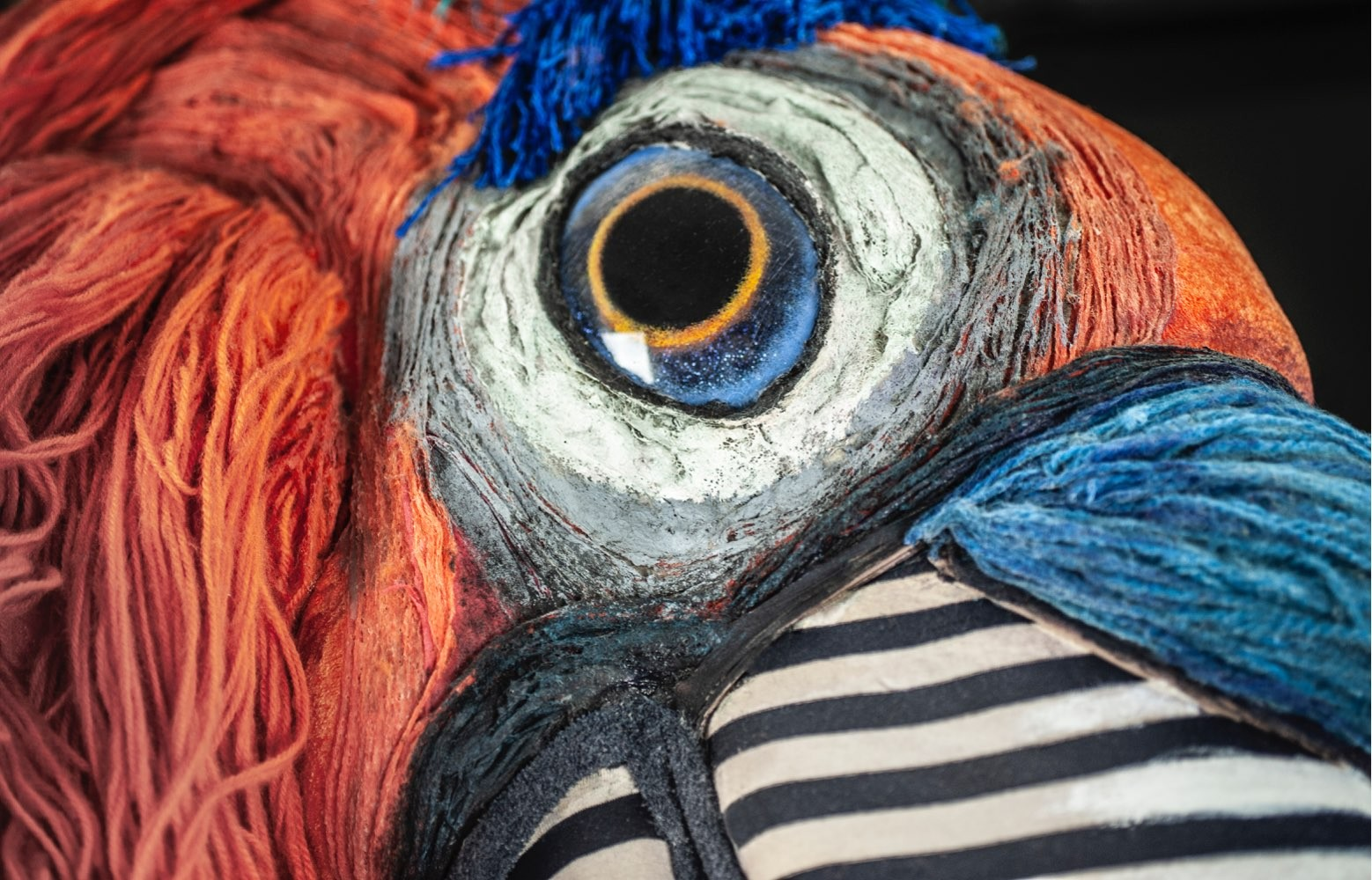 Et nærbilde av øyet til kjempepapegøyen Casanova