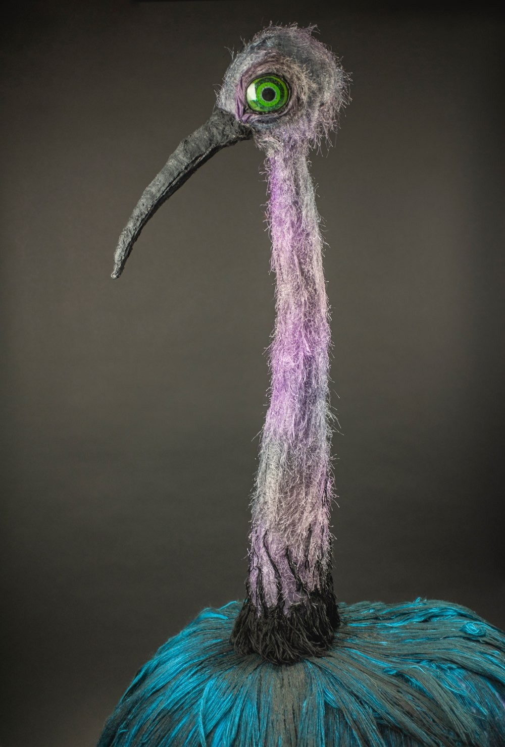 A half portrait of Claudia the lilac and turquoise ostrich