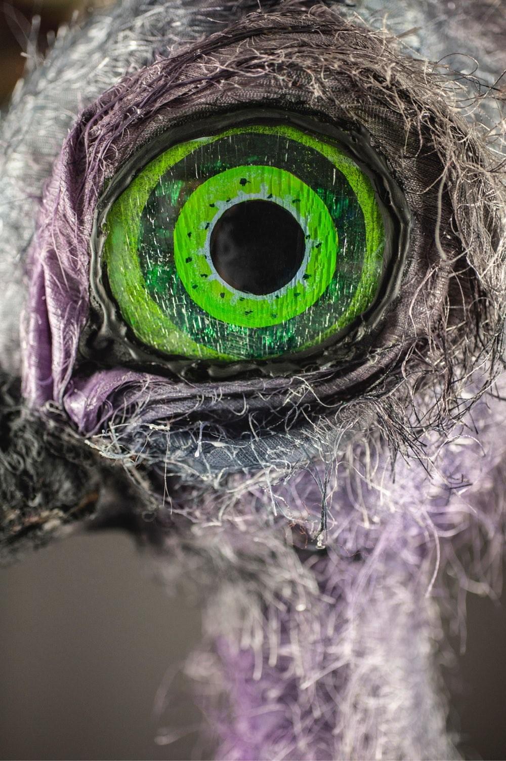 Et nærbilde av strutsen Claudia's grønne og sorte øyne.