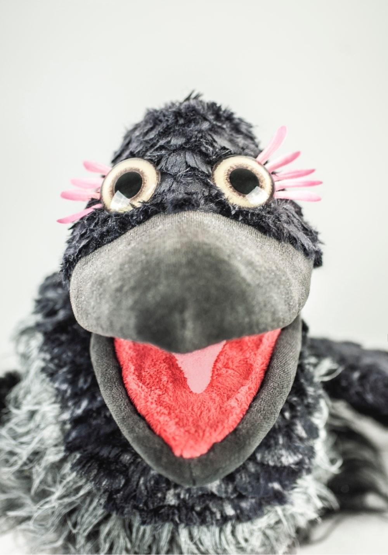 A close up portrait of Gárja the crow