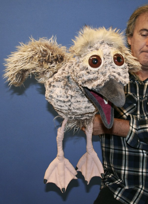 Sean Morrissey holding Skávhli the seagull