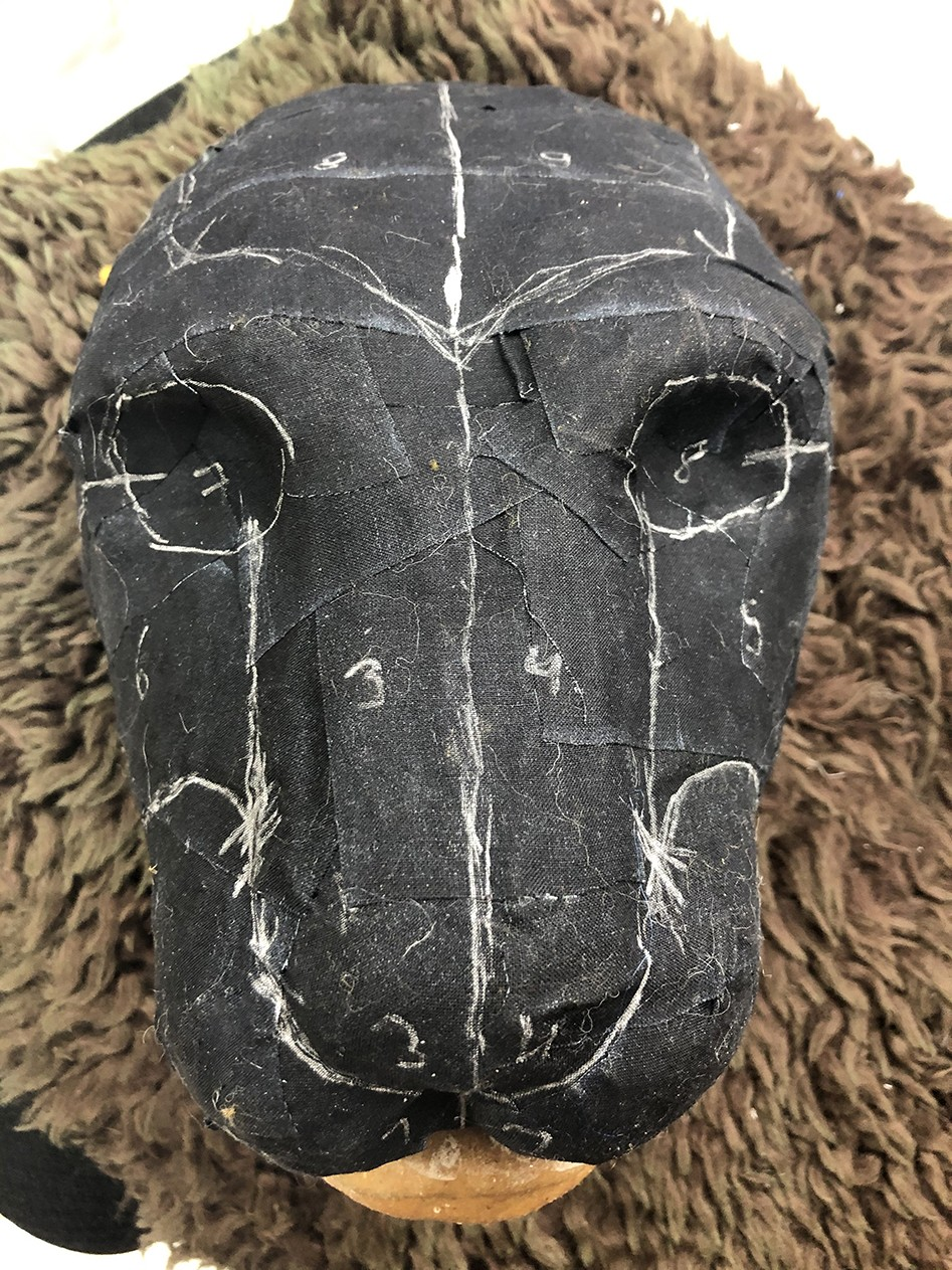 Pattern division drawn on the lion puppet head.