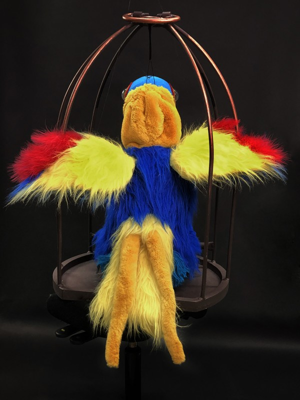 A colourful parrot with unfolded wings
